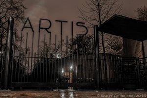 An entrance to the Artis Zoo in Amsterdam. Photo credit: Scott Chimileski