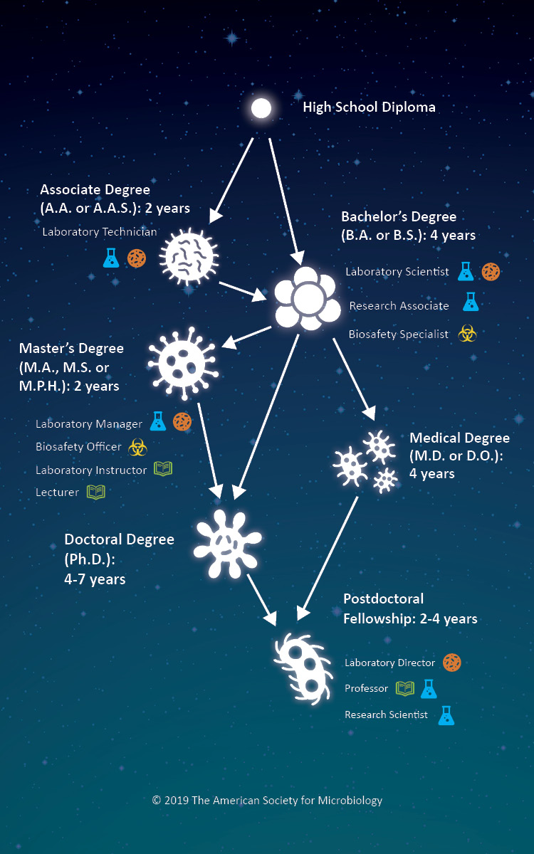 "This infographic shows microbiology jobs by minimum education level (from High School Diploma up to Postdoctoral Fellowship). Icons indicate the focus of a particular job, from Research to Biosafety, as explained in the ""What Do Microbiologists Do?"" section."