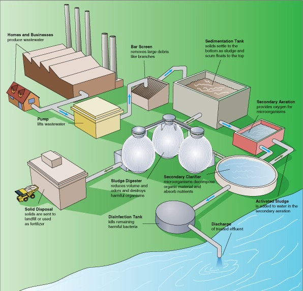 Illustration showing the main steps of the activated sludge process used by large-scale wastewater management facilities.