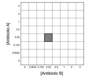 Checkerboard array for determining antibiotic efficacy.
